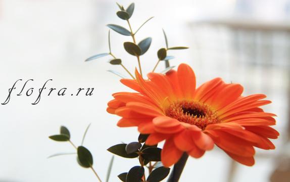 композиция цветочная своими руками аранжировка кемерово флористика букет